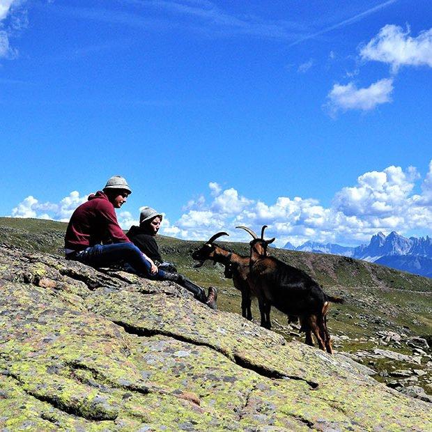 felthunderhof-villnoess-freitzspass-aktiv-sommer.jpg-2