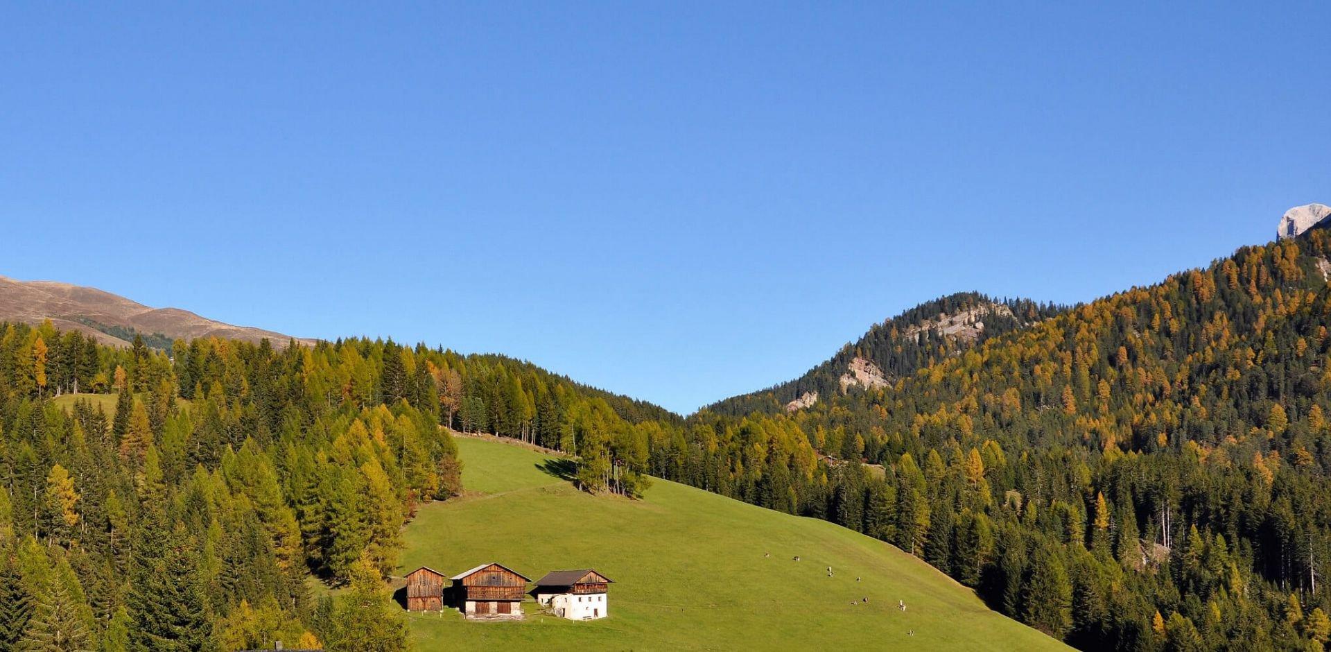 Laseiderhof 2