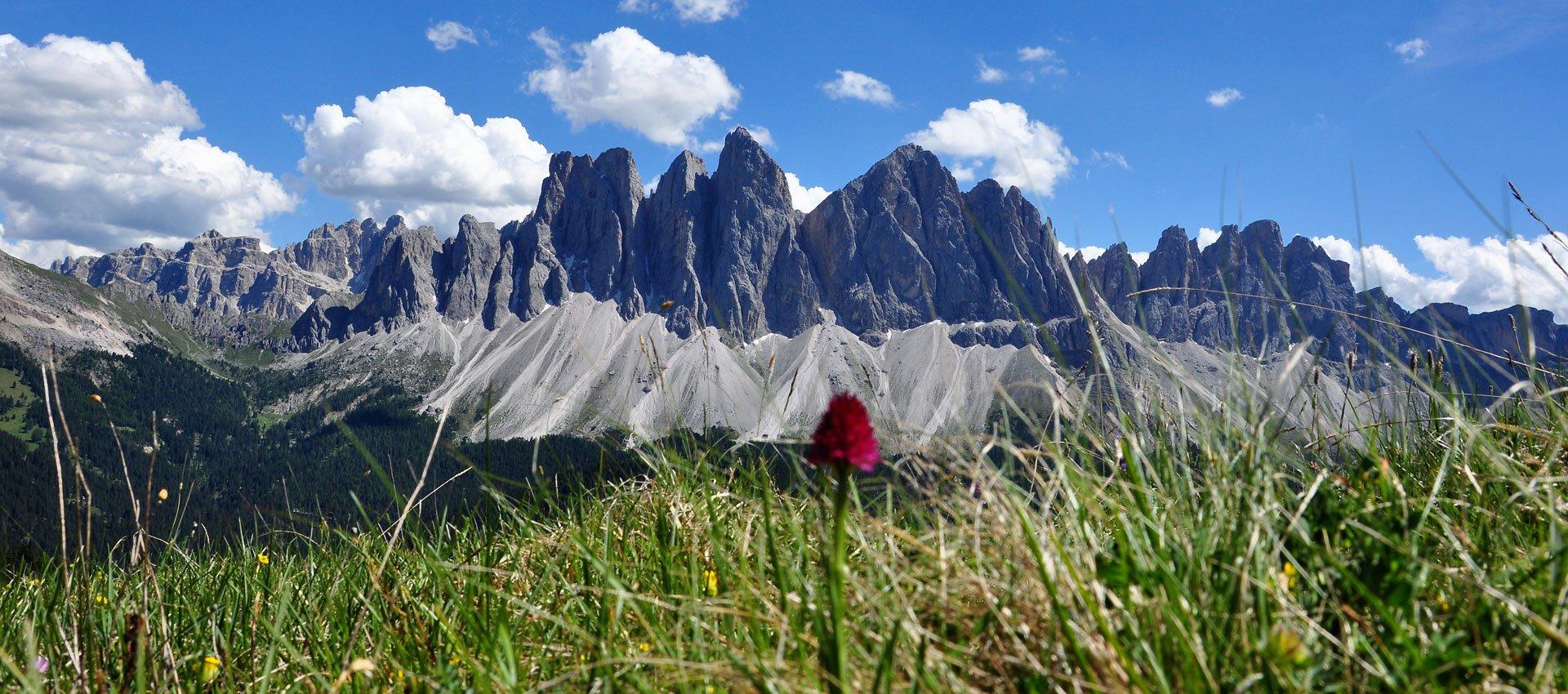 wandern-klettern-sommerurlaub-villnoesstal