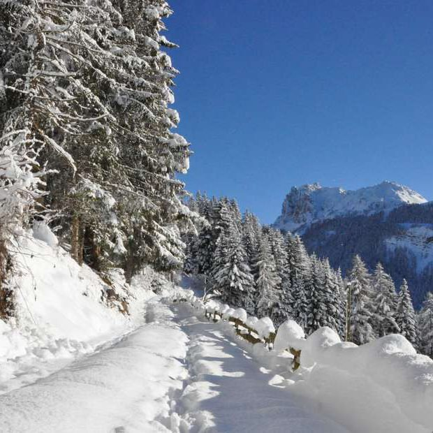 vacanze-invernali-nelle-dolomiti-05